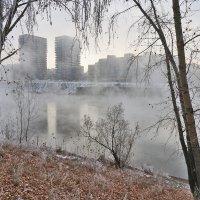 Туман так похож на обман... :: Екатерина Торганская