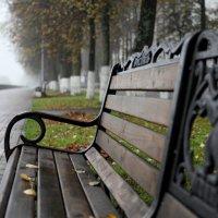 В туман :: Ксения Черных