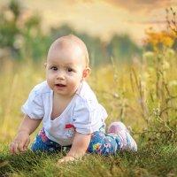 Когда трава была высокой :: Вера Сафонова