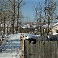 Наступила весна :: Leonid Rutov