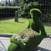 Везу цветы на тачке :: Дмитрий Никитин