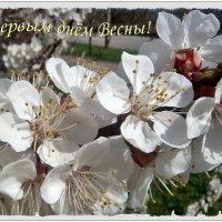 С первым днём Весны, дорогие друзья! :: Нина Корешкова