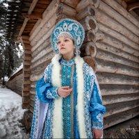 До следующей зимы... :: Дмитрий Постников