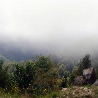 1400 м. над уровнем моря :: Валерия Рид