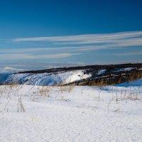 На Севере весна.... :: Борис Швец