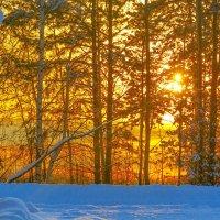 Зимнее озеро! :: Вячеслав Назаренко
