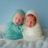 Двойняшки 14 дней :: Эльмира Грабалина