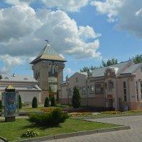 Дом для электричества :: Светлана Ларионова