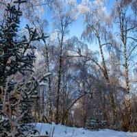 Провожая зиму... :: Rafael