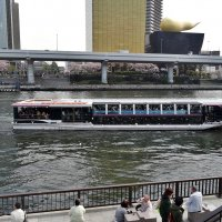 Tokyo Река Сумида :: Swetlana V