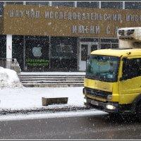 Пока еще падал снег... :: Михаил Розенберг