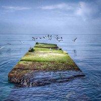 Black Sea :: Liliya