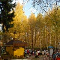 осень в парке :: Александр Попков