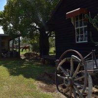 Старый дом у дороги, отслуживший свое... :: Лара Гамильтон