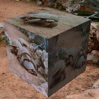 Черепаший кубик. :: Ludmila Frumkina