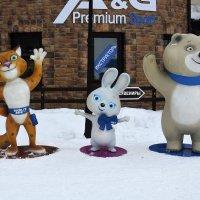Талисманы Олимпийских Игр в Сочи 2014 года :: Дмитрий Петренко