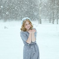 Снежок. :: Сергей Гутерман