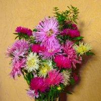 Цветы :: Сергей Лякишев