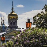 Весенний этюд :: Valeriy Piterskiy