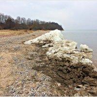 На берегу Калининградского залива. :: Валерия Комова