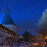 У стен Новоспасского монастыря :: Alex