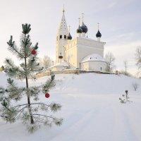 Воскресенский храм с. Вятское :: Дмитрий Павлов