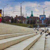 Городские зарисовки. Время кормить птиц. :: Алекандр Зиновьев