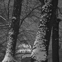 Зимним вечером Исаакий :: Елена