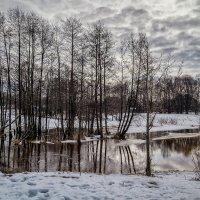 Начало марта 2017 №3 :: Андрей Дворников