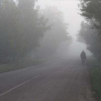 утро туманное :: Ольга Оригана Ваганова