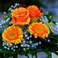 Всех женщин с 8 марта ... Будьте счастливы. :: Владимир Икомацких