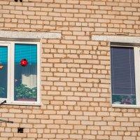 окно оптимистов :: Сергей Воробьев