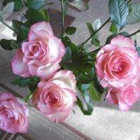 Милых женщин поздравляю с днем 8 Марта и дарю розы! :: татьяна