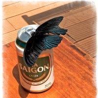 Бабочка и пиво :: Alexander Dementev