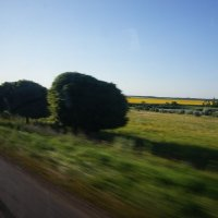 Дорога домой. Пролетая вдоль полей.. :: Наталья Дорошенко