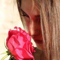 роза :: иван