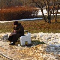 Уже можно погреться на солнышке :: Андрей Лукьянов