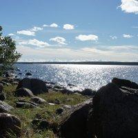 г. Приморск. Финский залив :: Елена Павлова (Смолова)