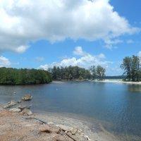Побережье острова Ко Куд. Вид на реку с морским прибоем на заднем плане. :: Лариса (Phinikia) Двойникова