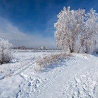 Последние дни зимы :: Анатолий Иргл