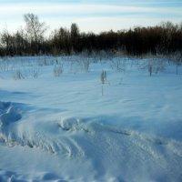 Зима еще держится! :: Надежда