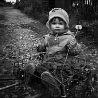 """""""Одуванчик"""" :: Dmitry Metal"""