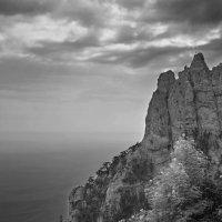 Сосны на краю. :: Андрий Майковский