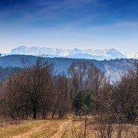 Крым, Чатыр-даг в снегу :: Юрий Яловенко