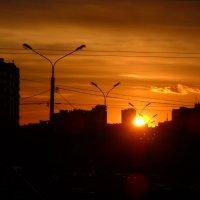 закат :: Александр Попков