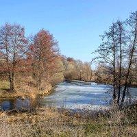 Возле весенней речушки :: Сергей Тарабара