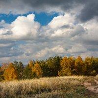 Осень :: Рашит Усманов