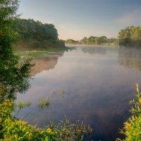 Туманное утро. Река Десна около д.Слобода :: Александр Березуцкий (nevant60)