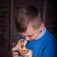котенок и мальчик :: valentina
