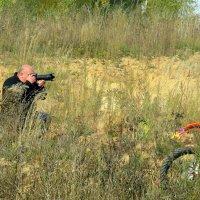 фотоснайпера в засаде :: aleksandr Крылов